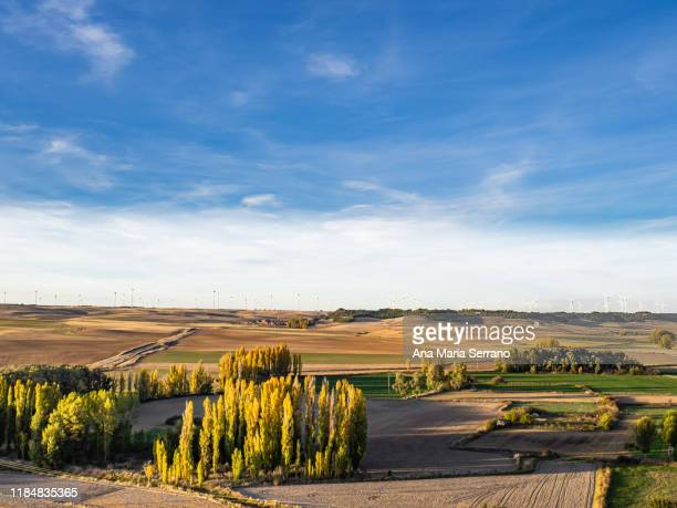 aerial view of a scenic autumn landscape with farm fields, rural roads, houses and wind turbines on the horizon in the spanish municipality of torrelobatón. - castilla leon fotografías e imágenes de stock