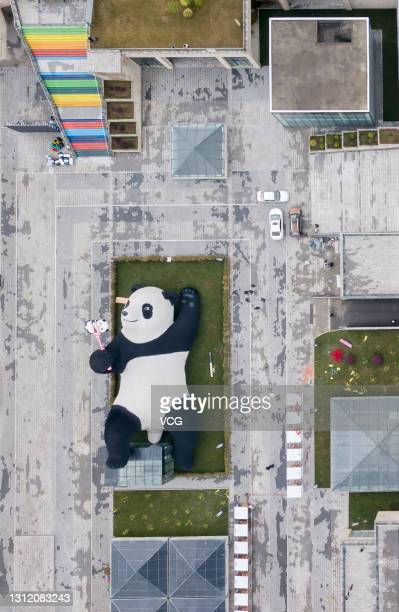 Aerial view of a selfie-taking giant panda sculpture designed by Dutch artist Florentijn Hofman at the Yangtianwo square on April 2, 2021 in...