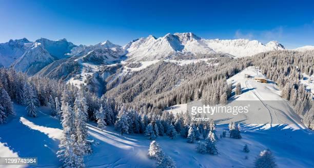 luftaufnahme eines skigebiets mit schneebedeckten bäumen - kemter stock-fotos und bilder