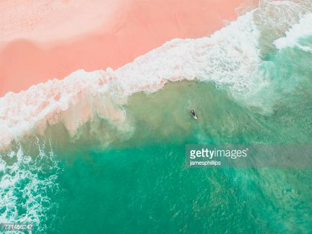aerial view of a surfer, bondi beach, new south wales, australia - ponto de vista de drone - fotografias e filmes do acervo