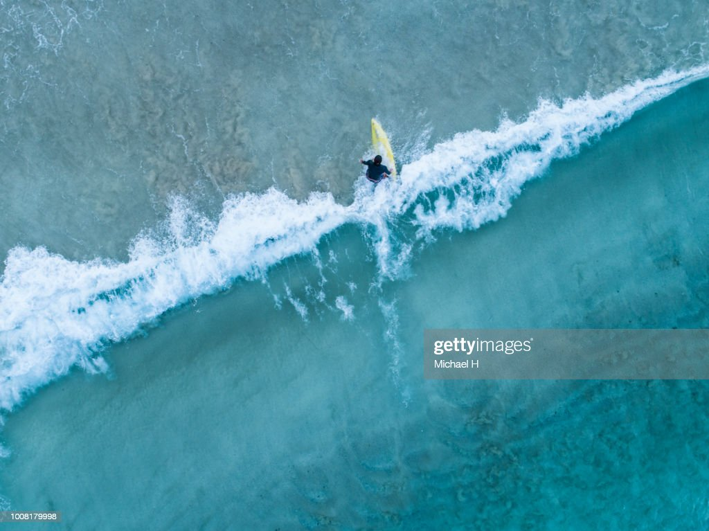 Aerial view of a surfer girl : Stock Photo
