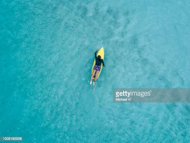 aerial view of a surfer girl - paddling stock pictures, royalty-free photos & images
