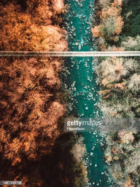 小川と森の上のつり橋の航空写真 - つり橋 ストックフォトと画像