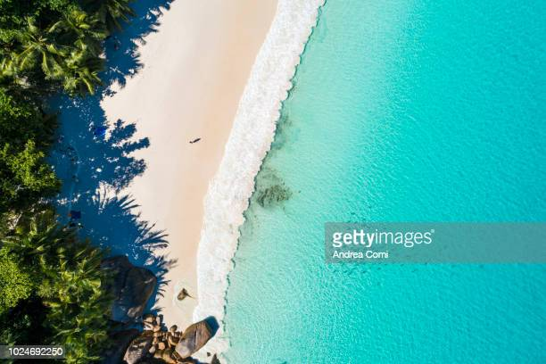 aerial view of a tourist relaxing on a tropical beach - perfection stock pictures, royalty-free photos & images