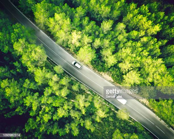 aerial view of a two lane straight road in a forest with a white car and van - white van stock photos and pictures