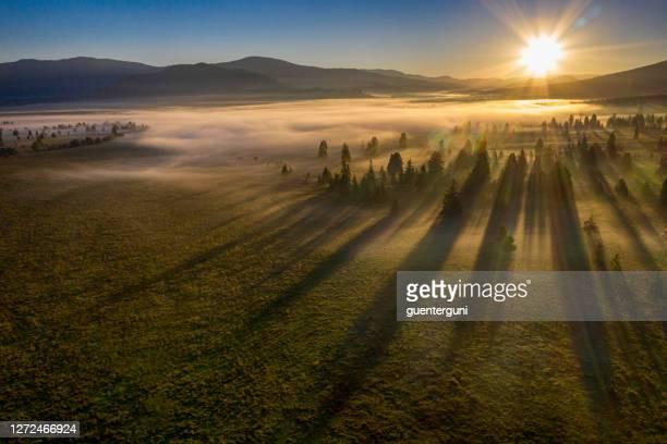 luchtmening van een vallei in de ochtendmist, karpaten bergen - schemering stockfoto's en -beelden