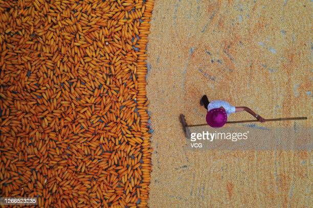Aerial view of a villager drying corns on August 15, 2020 in Chongqing, China.