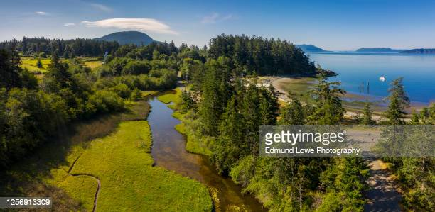 aerial view of a watershed on lummi island, washington - north pacific stock pictures, royalty-free photos & images