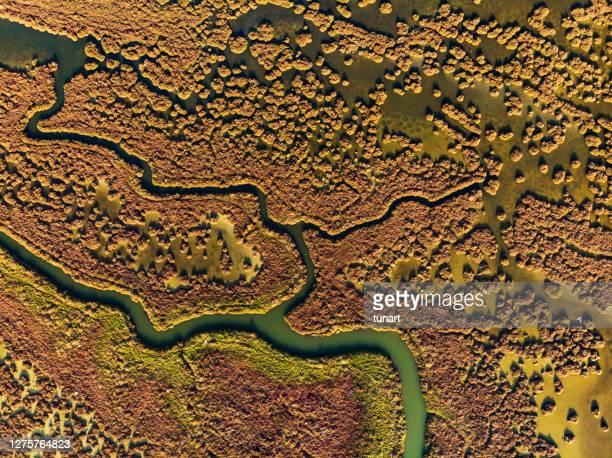 湿地の空中写真 - 地形 ストックフォトと画像