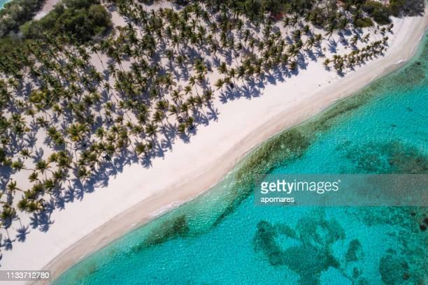 vista aérea de un cayo de arena blanca en el mar caribe con aguas turquesas - caribe fotografías e imágenes de stock