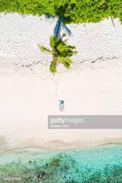 aerial view of a woman relaxing on the beach - wonderlust stock pictures, royalty-free photos & images