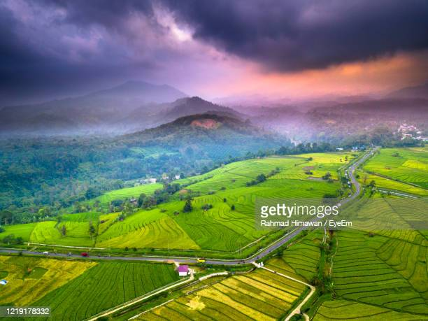 aerial view of agricultural field against sky - rahmad himawan stock pictures, royalty-free photos & images