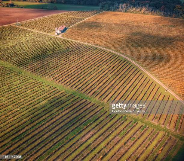 aerial view of agricultural field - charente stock pictures, royalty-free photos & images
