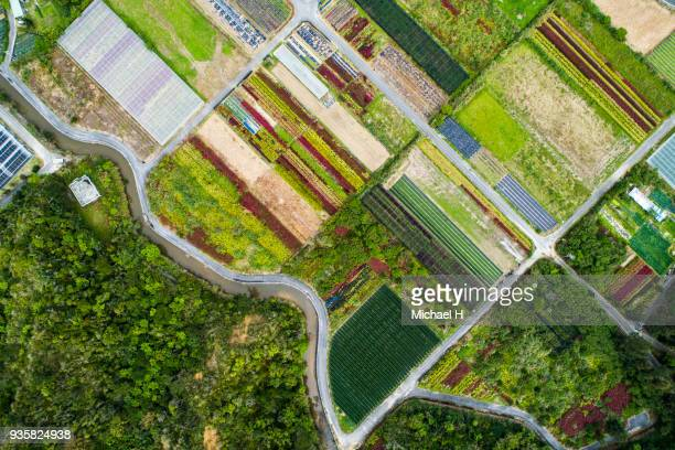aerial view of agricultural field. - ドローン撮影 ストックフォトと画像
