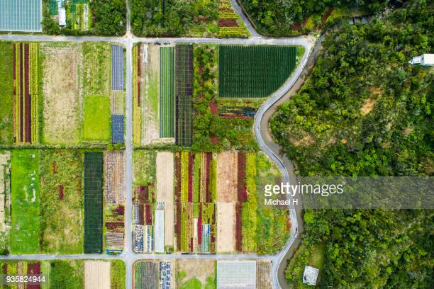 aerial view of agricultural field. - satoyama scenery stock pictures, royalty-free photos & images