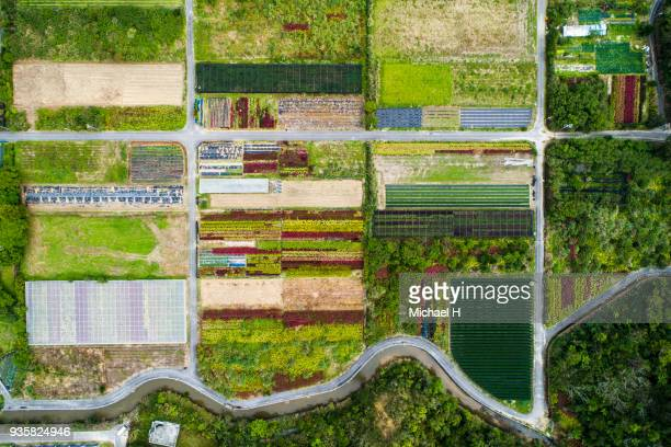 aerial view of agricultural field. - imperial system fotografías e imágenes de stock