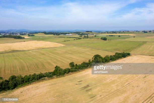 aerial view of agricultural fields in rural scotland - johnfscott stock pictures, royalty-free photos & images