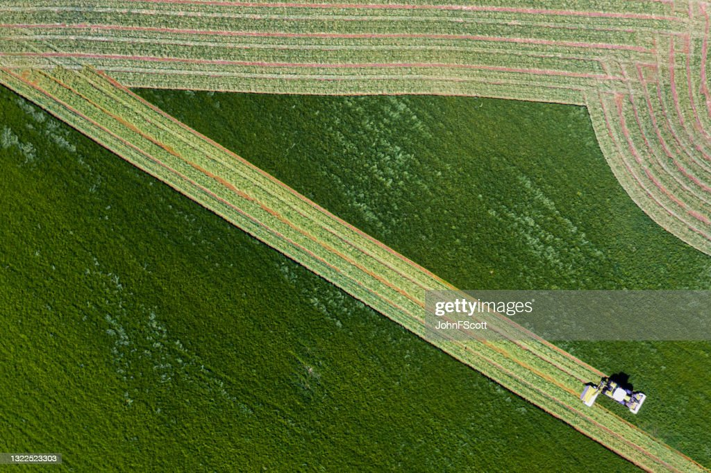 Aerial view of agricultural grass cutting : Stock Photo
