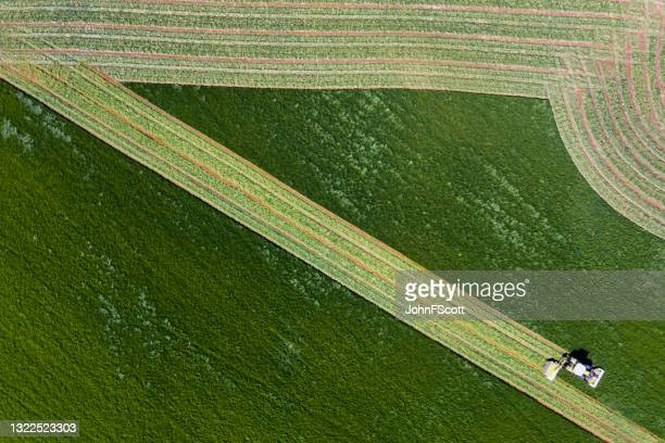 aerial view of agricultural grass cutting - johnfscott stock pictures, royalty-free photos & images