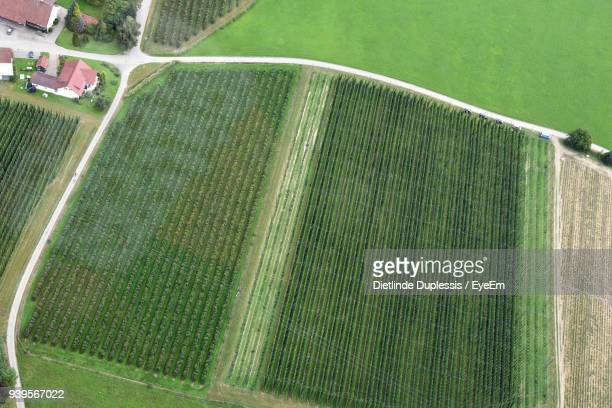 aerial view of agricultural land - dietlinde duplessis stock pictures, royalty-free photos & images