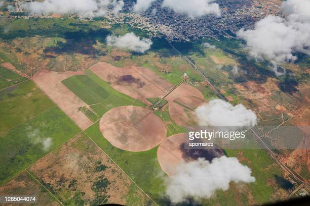 aerial view of agriculture fields - sorghum stock pictures, royalty-free photos & images