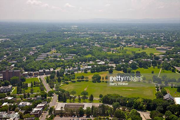 Aerial view of Albany parks and trees