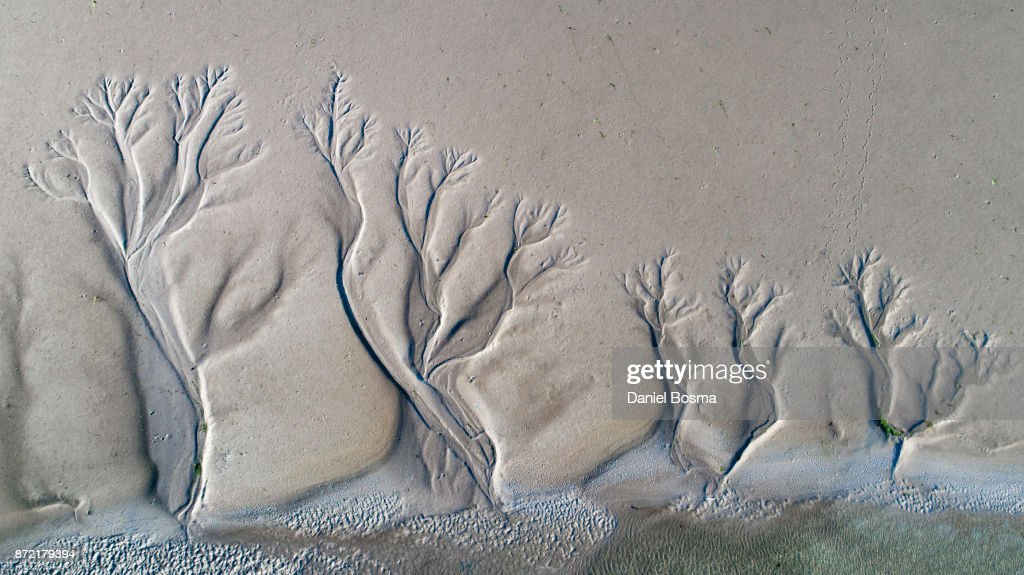 Aerial view of amazing natural shapes and textures created by tidal changes : Stock Photo