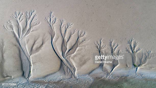 aerial view of amazing natural shapes and textures created by tidal changes - tide stock pictures, royalty-free photos & images