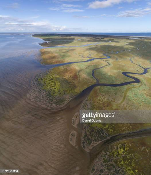 Aerial view of amazing natural shapes and textures in the salt marsh of Schiermonnikoog