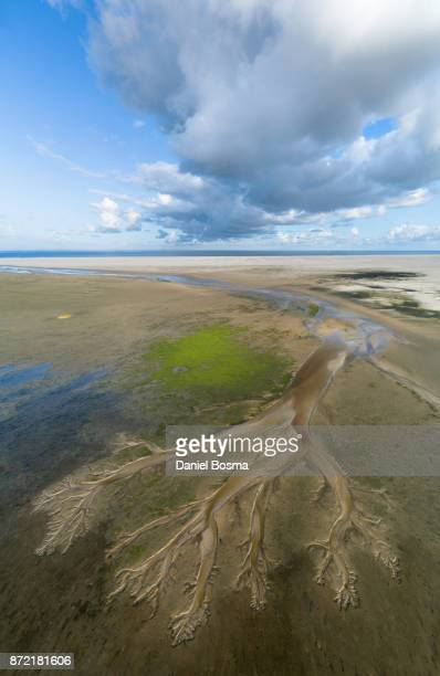 Aerial view of amazing natural shapes, on Schiermonnikoog island, created by tidal changes