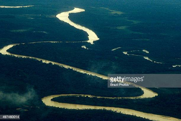 Aerial view of Amazon rain forest river curves and dense forest with high biodiversity Brazil
