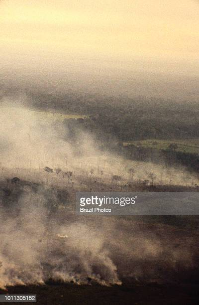 Aerial view of Amazon rainforest burning farm management with deforestation Acre State Brazil