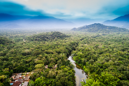 Aerial View of Amazon Rainforest, South America 854515924