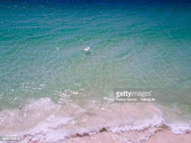 Aerial view of an empty beach, Hyams Beach, Jervis Bay, Australia