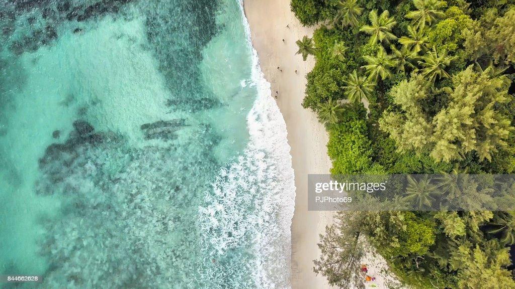 Aerial view of Anse Takamaka -  Mahe Island : Foto stock
