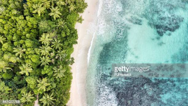 aerial view of anse takamaka -  mahe island - seychelles - idyllic stock pictures, royalty-free photos & images