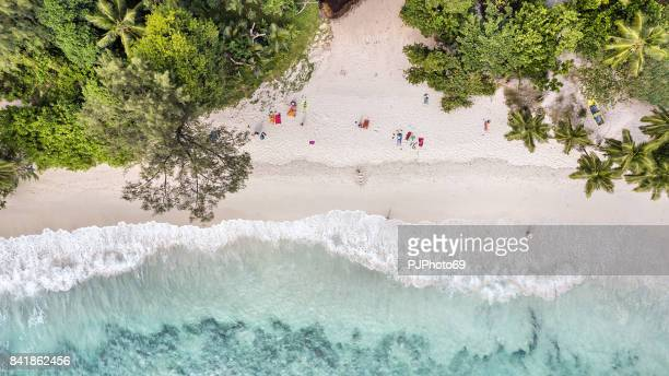 Aerial view of Anse Takamaka -  Mahe Island - Seychelles