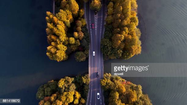 aerial view of asphalt road through green forest