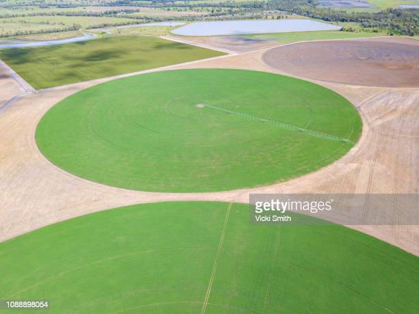 aerial view of australian agricultural farm land - crop circle stock pictures, royalty-free photos & images