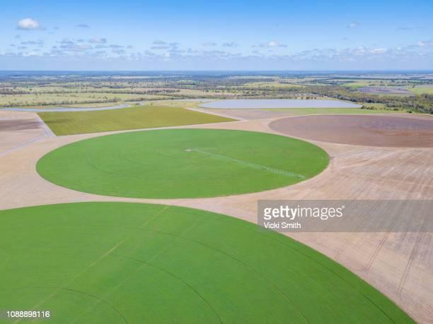 aerial view of australian agricultural farm land - kornkreis stock-fotos und bilder