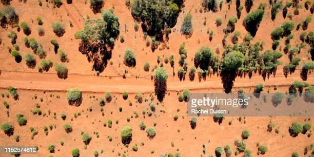 aerial view of australian dirt track - outback stock pictures, royalty-free photos & images