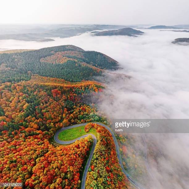 Vista aérea de otoño camino forestal desciende en niebla de la mañana. Mosele Valle, Alemania.