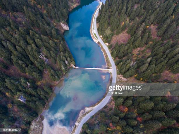 Aerial view of autumnal forests with lake.