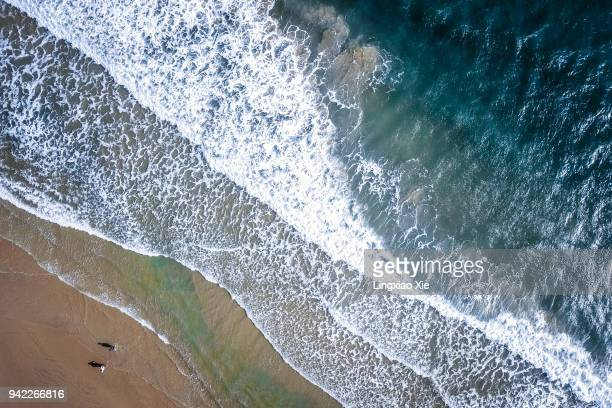 Aerial view of beach and coastline with people and ocean waves