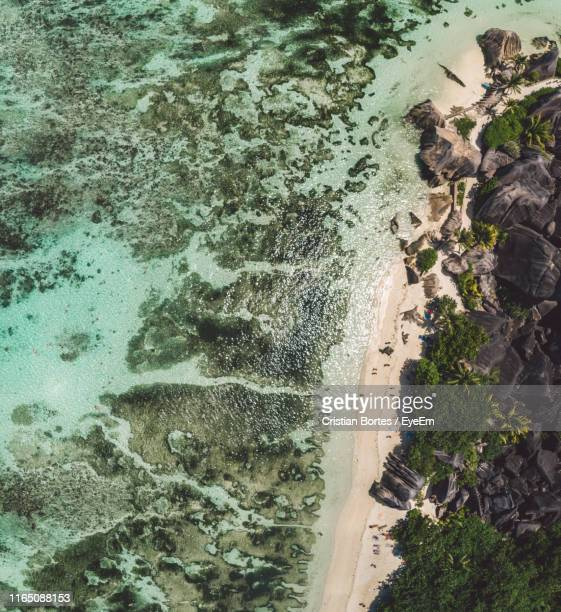 aerial view of beach - bortes stockfoto's en -beelden