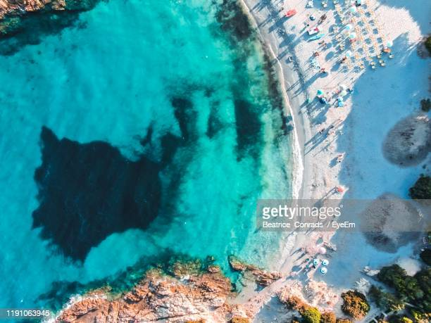 aerial view of beach - beatrice stock pictures, royalty-free photos & images