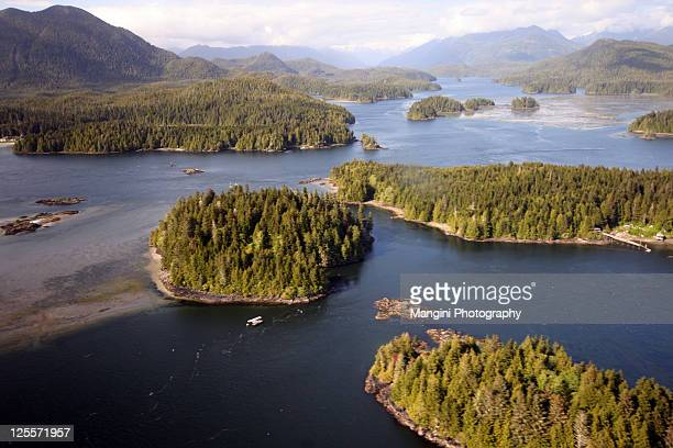 aerial view of beach - vancouver island stockfoto's en -beelden