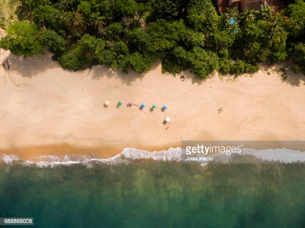 aerial view of beach umbrellas at toque-toque pequeno - sao sebastiao, sao paulo, brazil - south america stock pictures, royalty-free photos & images