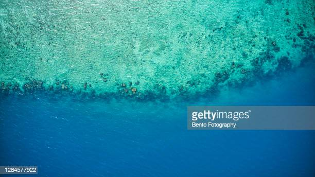 aerial view of beautiful coral reef through crystal clear water, phuket, thailand. - high section stock pictures, royalty-free photos & images