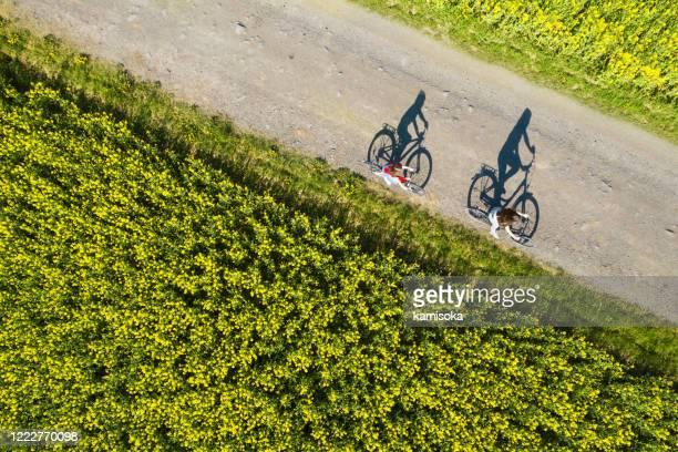 luchtmening van fietsschaduwen op de lege asfaltweg tussen raapzaadgebied - fietsen stockfoto's en -beelden